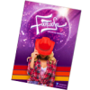 Program suvenir 2013